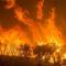 Incendi dolosi in Amazzonia: chi sono i responsabili?
